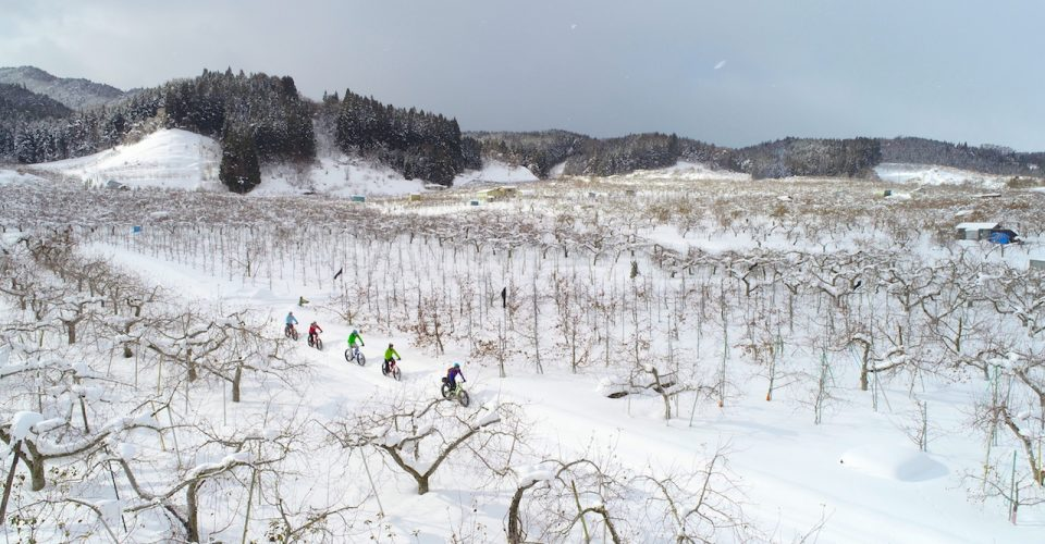 -From Owani Onsen Station- Winter apple garden tour with hot spring!