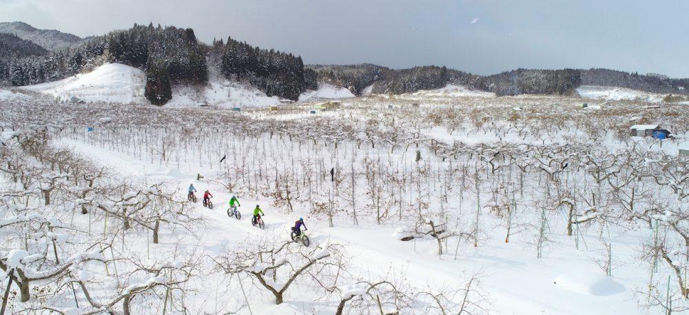 大鰐温泉駅発着 冬のりんご園ツアー 温泉付き!